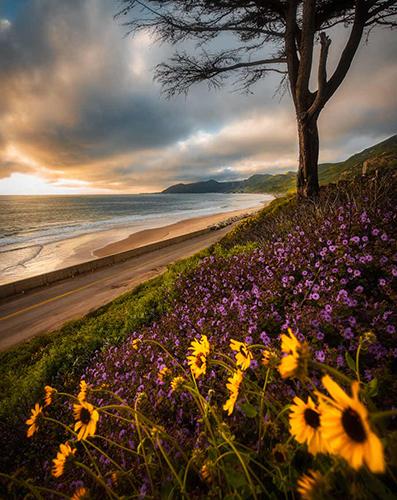 Ventura Oceanfront